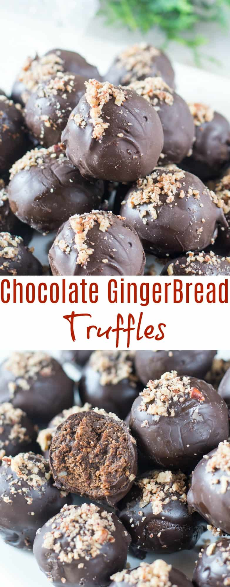 Chocolate Gingerbread Truffle