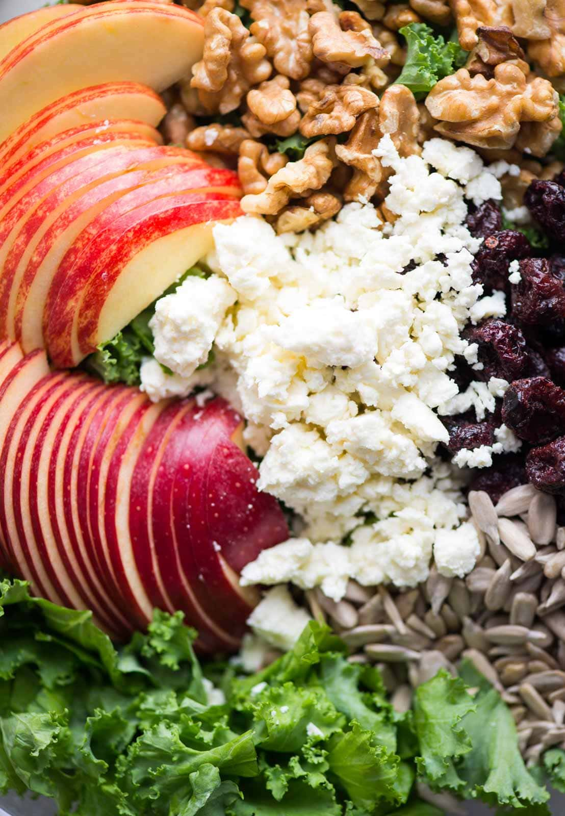 Close-up picture of all ingredients of Apple Kale Salad - Sliced apples, feta, walnut, cranberries and sunflower seeds.